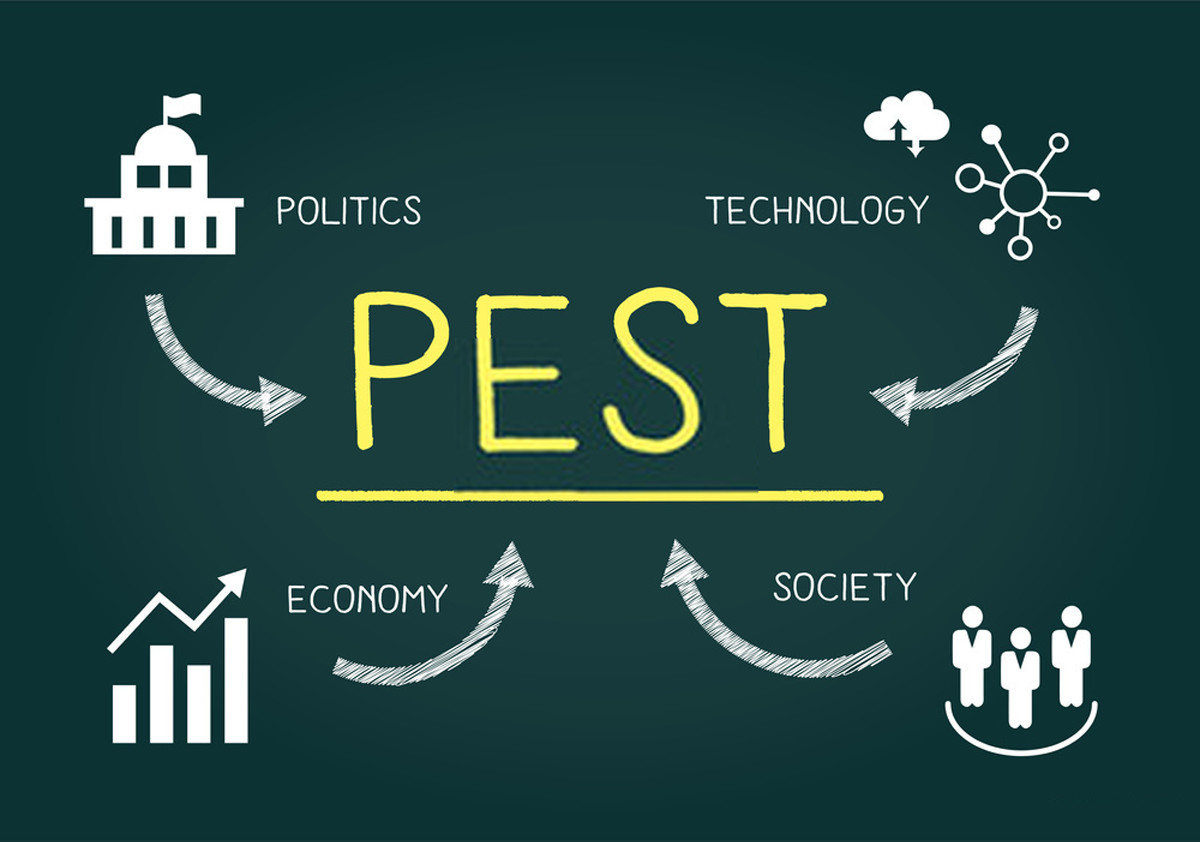 What is PEST Analysis? How to Perform PEST Analysis